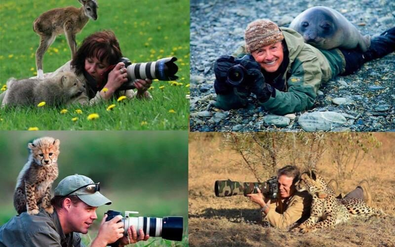 Photographers Getting Interrupted By Wildlife Animals – Candid Moments
