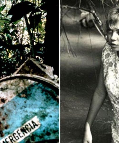 5 Incredible survival stories that will give you goosebumps